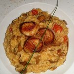 Rissotto with cepes and scallops