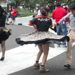 Die Rock'n Roll-Tänzer leben ihre Tanzliebe sonntags aus, bevor es am Montag wieder an den Job g