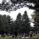 Ein wunderbarer Park mit viel Grün, viel Platz, viel Weite