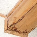 wood trim along ceiling