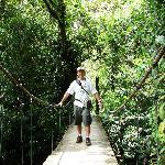 puentes colgantes en arenal parque nacional eagle tours