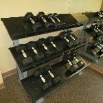 dumbbell weights in fitness center