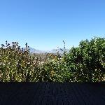 View from the restaurant veranda