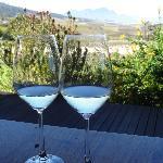 """Enjoying the """"Chameleon"""" white wine"""