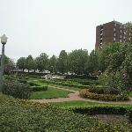 Gardens across the street