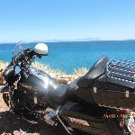 Harley Traveller