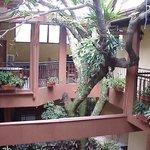 Photo de Hotel Aeromundo