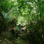 Going to Aguateca ruins, jungle, Guatemala