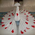 Towel art Peacock