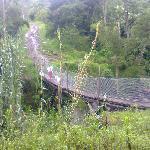 hermosa vista ecologica