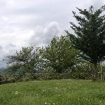 Photo of Le Murene