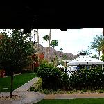 View from patio Oasis 509.