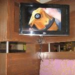 private TV in each private sitting area