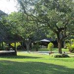 Zebra Hills Gardens and Pool
