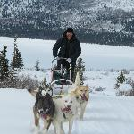 Dog Mushing.