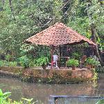 Kodianthara