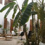 patio interior del Riad