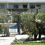 A sample of the topiary