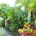 Amazing landscaping