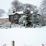 Snowy Garvock Saltire