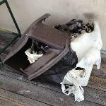 Burned garbage can by the Tiki Bar