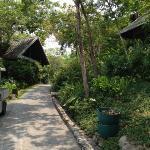 the natural environment at Kamalaya