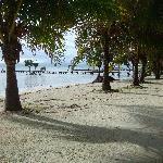 La playa frente al hotel