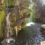 Waterfall at the Garden