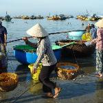 fishing village in the morning