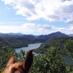 Panorama del Lago Cedrino