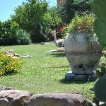 Particolare...il giardino!