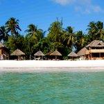 Makuti Beach Hotel and Bungalows