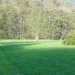 Bottom camping field