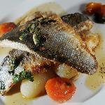 Old Lodge sea bass