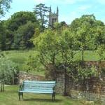 Cattistock Church from the Walled Garden