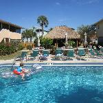 Pool and Tiki Bar