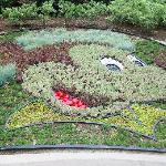 Mickey Plant Decor