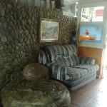 Photo of Golfinho Tropical
