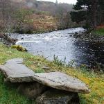 A lovely little bench up stream. It's lovely to walk along the river.