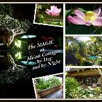 The Magic of Melati Cottages by Day and by Night