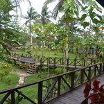 Sukau Bilit Rainforest Lodge