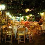 Tur Sinai Organic Farm Resort Foto