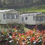 Spruce Caravans