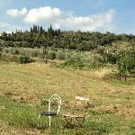 Photo of Ristonchia  -  Castiglion Fiorentino