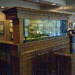 Aquarium in entry