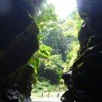 Millenium Cave