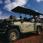 High quality game drives