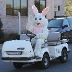 The Easter Bunny made an appearance at the DoubleTree on Easter morning.