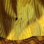 one of several holes in bed skirt
