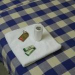 Klopapier, Tuch und Seife